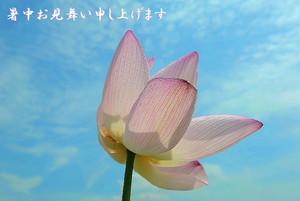 2012_0718_133819dsc_98211b1_2
