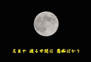 2013_0919_192728dsc_63331b1