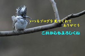 Dsc_03281b2
