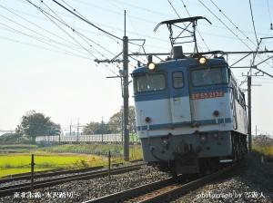 Dsc_18161b1photo-by