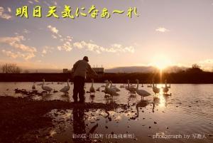 Dsc_31881b-1photograph-by