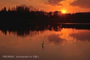 Dsc_35661b1photograph-by