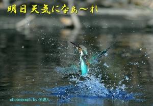 Dsc_63961b1-photograph-by
