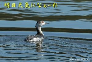 Dsc_69021b1photo-by_20200311184801